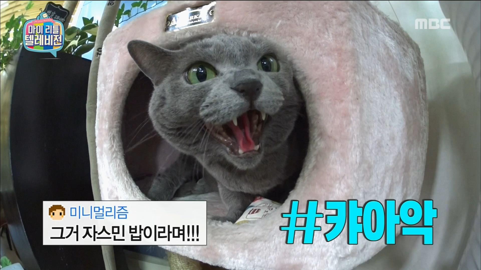 이홍기&최종훈, 게스트 방송 거부 사태에 진땀
