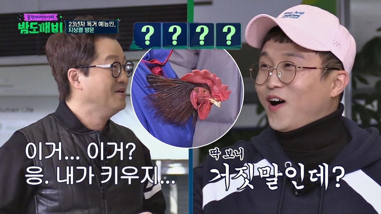 (당황) 살아있는 닭 들고 등장한 독거 예능인 지상렬()