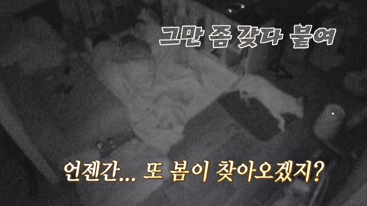 이효리, 겨울밤 감성 폭발 언젠간, 또 봄이 찾아오겠지...?